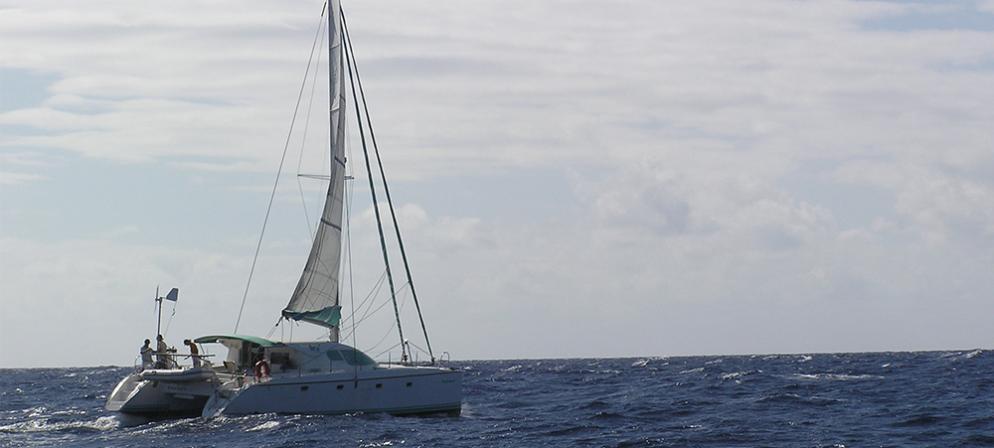 1000x451_bateau.jpg